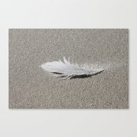 Feather In The Sand Canvas Print