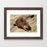 beever Framed Art Print