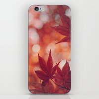 Maple Reds iPhone & iPod Skin