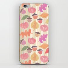 Fall Mix and Stripes iPhone & iPod Skin