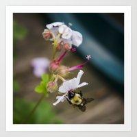 Being A Bee Art Print