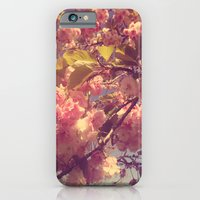 iPhone & iPod Case featuring Rose Pink by TaylorT