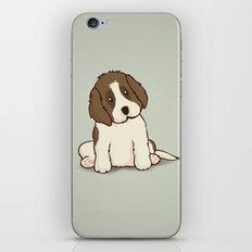 Saint Bernard Dog Illustration iPhone & iPod Skin