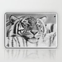 Sleepy Tiger Laptop & iPad Skin