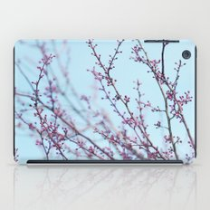 Spring Air iPad Case