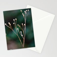 Seed Heads Stationery Cards