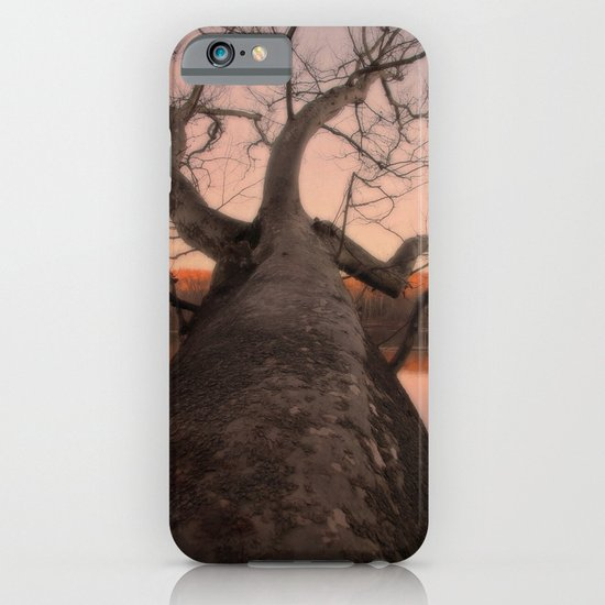 nature's perspective iPhone & iPod Case