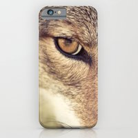 iPhone Cases featuring In the eyes of the Coyote by Isabelle Lafrance Photography