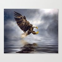 Bald Eagle Swooping Canvas Print