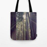Redwoods Hike Tote Bag