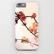 Cherry Blossom pink iPhone 6s Slim Case