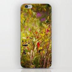 Fall Field iPhone & iPod Skin