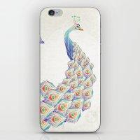 White Peacock iPhone & iPod Skin