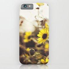 Wild Sunflowers iPhone 6s Slim Case