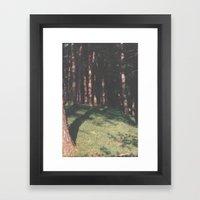 Trees In Ullswater Framed Art Print