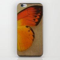 Papillon  iPhone & iPod Skin