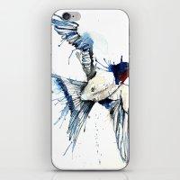 My Swallow iPhone & iPod Skin