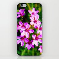 Spring Sweetness iPhone & iPod Skin