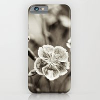 Where Wild Bee Wings Fly iPhone 6 Slim Case