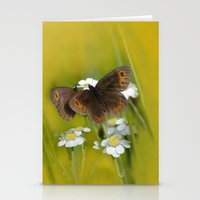 Summery Butterflies on Gold Stationery Cards