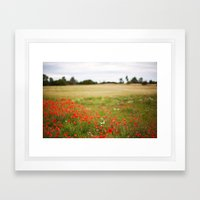 Poppy field. Framed Art Print