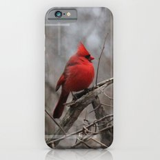 The Cardinal  iPhone 6 Slim Case