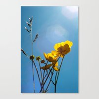 {build me up buttercup} Canvas Print