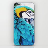 Parrot Life iPhone & iPod Skin