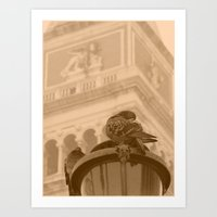 Venetian birds Art Print