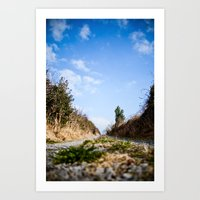 To the lake. Art Print