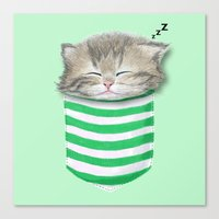 Cat in the Pocket Canvas Print