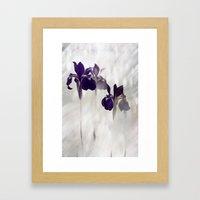Diaphanous 2 Framed Art Print