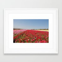 Flower Fields Framed Art Print