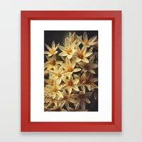 Celebrate Life Framed Art Print