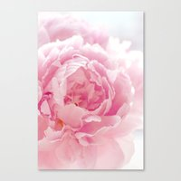 Thousand Petals Canvas Print
