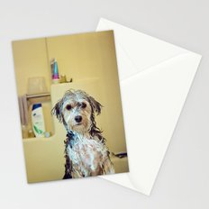 Clean and Anxious Stationery Cards