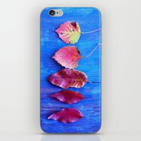 It's A Colorful World iPhone & iPod Skin