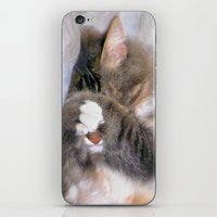 My Cat Actually Sleeps This Way iPhone & iPod Skin