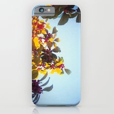 The Red Berry Tree (An Instagram Series) iPhone 6s Slim Case