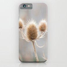 Thistles iPhone 6s Slim Case