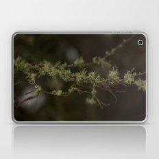Tree Fuzz Laptop & iPad Skin