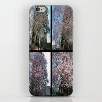 Tree Blossoms iPhone & iPod Skin