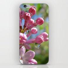 p i n k iPhone & iPod Skin