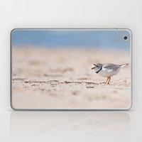 Great Lakes Piping Plover Laptop & iPad Skin