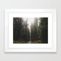 Redwoods In Prairie Cree… Framed Art Print