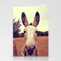 a curious donkey. Stationery Cards
