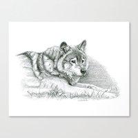 Wolf G036 Canvas Print