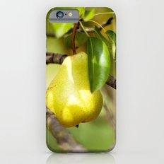 Country Living iPhone 6 Slim Case