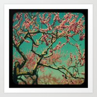 ttv Cherry tree Art Print