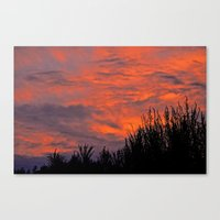 August Sunset Canvas Print